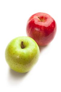 りんご FYI00111496