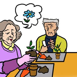 花苗を鉢に植える高齢者男女(園芸療法) FYI00112856