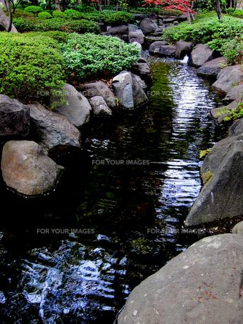 大田黒公園の川と岩場 FYI00112914