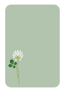 四葉のクローバーとシロツメ草の素材 [FYI00113840]