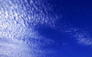 うろこ雲 FYI00114339