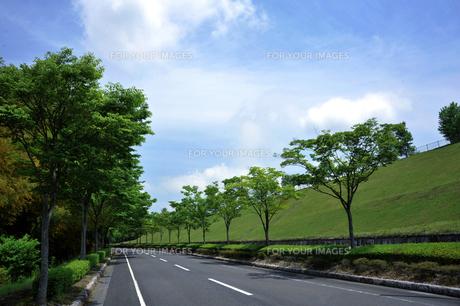 青空と道路-1 FYI00114371