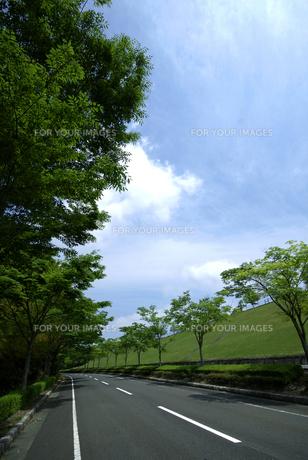 青空と道路-2 FYI00114378