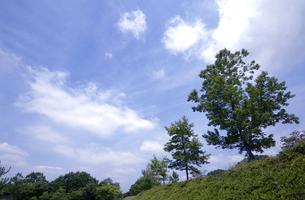 初夏の高原 FYI00114379