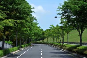 青空と道路-4 FYI00114385