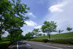 青空と道路-3 FYI00114401