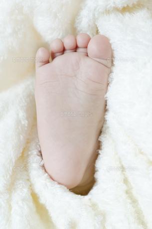 赤ちゃんの足裏 FYI00115239