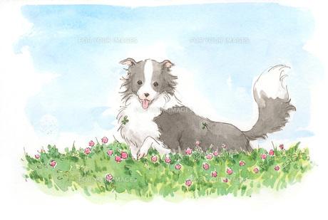 花の中の犬 FYI00116713