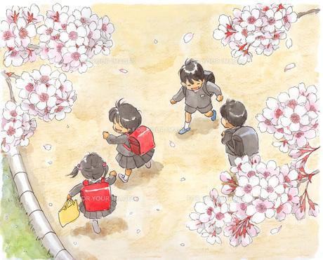 小学生と桜 FYI00116731