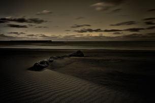 海 砂浜 FYI00117130