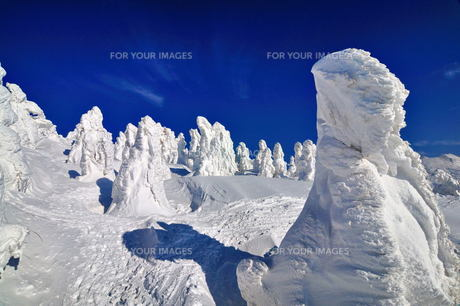 八甲田 樹氷 冬 雪山 青空 Fyi00117137 気軽に使える写真イラスト