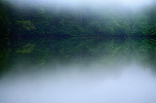夏の朝の湖 FYI00117233