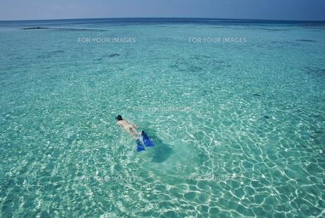 青いインド洋 FYI00117472