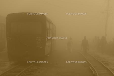 霧の中のダージリン鉄道 FYI00117601