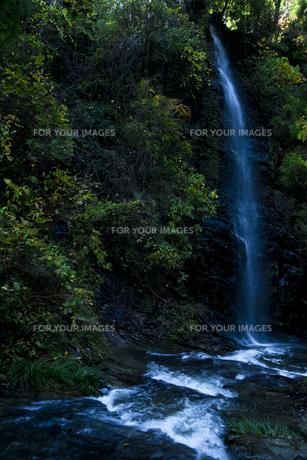 青白く流れる滝 FYI00117620