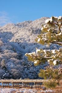 雪化粧 FYI00124538