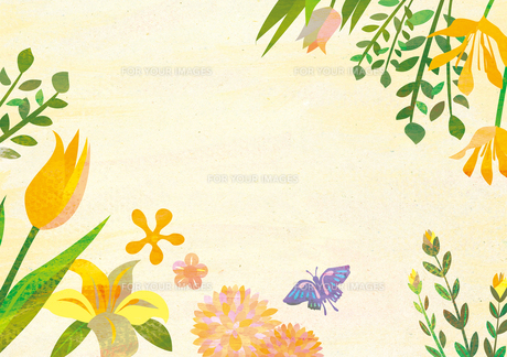 花のフレーム FYI00125925