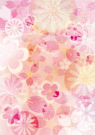桜イメージ1 FYI00126043