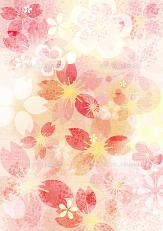 桜イメージ3 FYI00126081