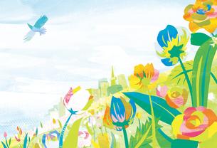 空と花畑 FYI00126085