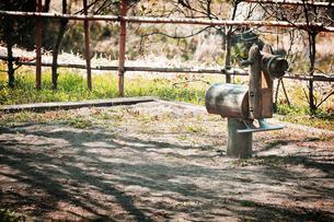 公園の木馬 FYI00126168