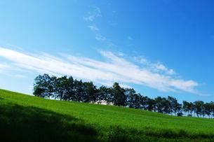 夏空と札幌の牧草地. FYI00128426