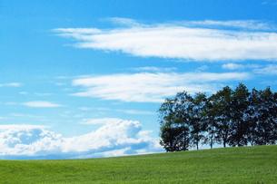 夏空と札幌の牧草地 FYI00128438