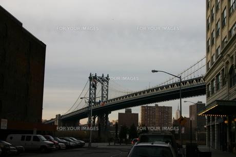 ブルックリン FYI00128683