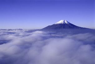 富士山と雲海 FYI00131474