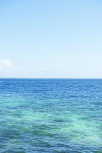 海 FYI00133322
