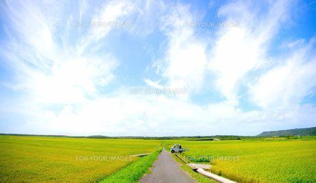 田園風景 FYI00134476