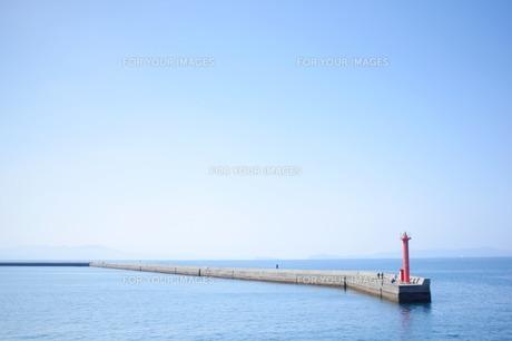 海 FYI00134524