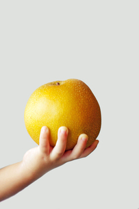 梨を持つ子供の手 FYI00134563