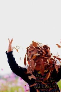落ち葉のシャワー FYI00134600