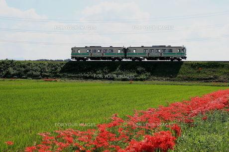ローカル線 FYI00135457