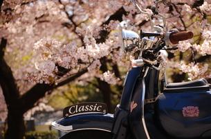 桜とバイク。 FYI00136392