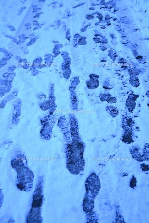 雪道の足跡。 FYI00136399