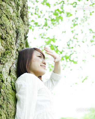 木の下で手をかざす女性 FYI00143140