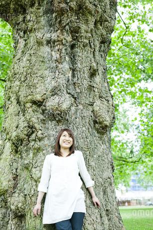 公園で木にもたれる若い女性 FYI00143141