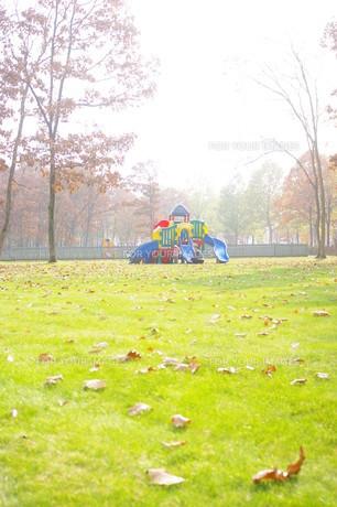 秋の終わりの公園 FYI00144860