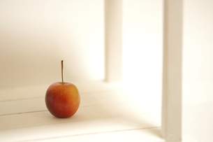 smal  apple FYI00147365