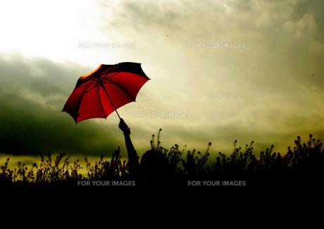 空と赤い傘 FYI00147455