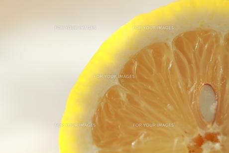 レモン FYI00151007