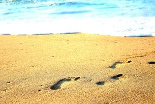 ビーチの足あと FYI00152179