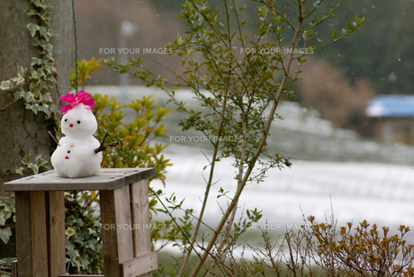 雪だるま FYI00154220
