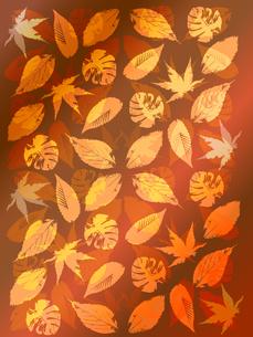 秋のフレーム FYI00157332