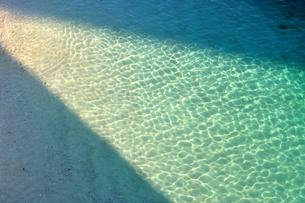 エメラルドグリーンのビーチ FYI00169868