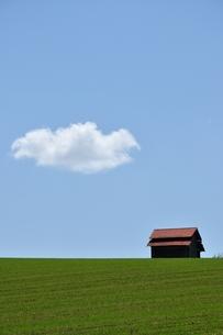 赤い屋根の家 FYI00175981
