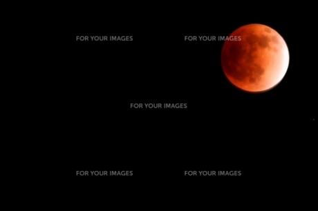 月食 2011 FYI00176514