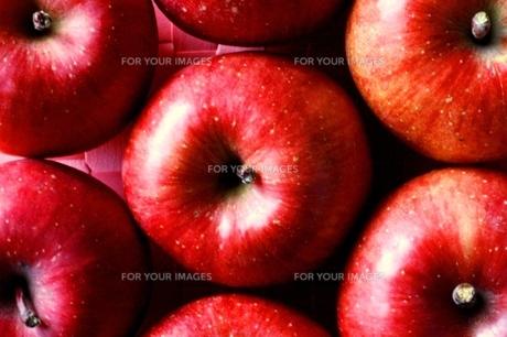 りんご FYI00176515